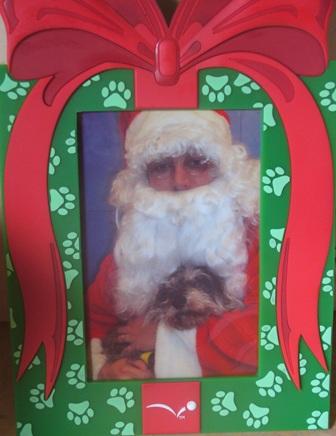 Toto and Santa